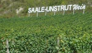 Saale-Unstrut-Wein