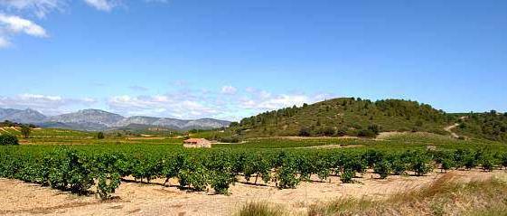 Landschaft im Roussillon. Foto: CIVR
