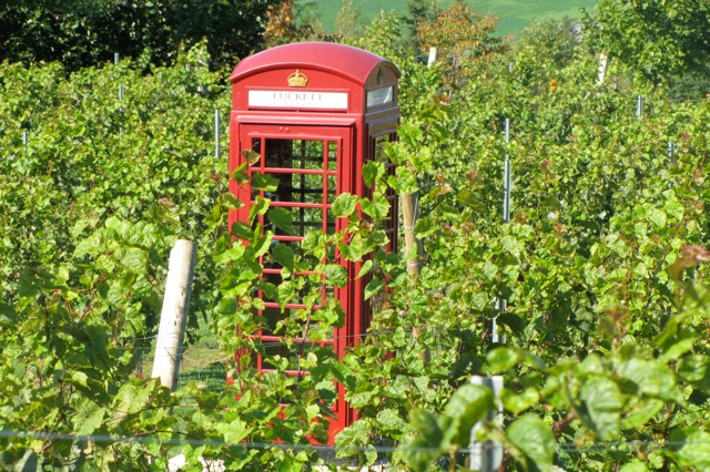 Eine Telefonzelle in Luckett Vineyards